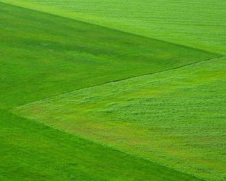 Malčer kosilica za ljepši travnjak